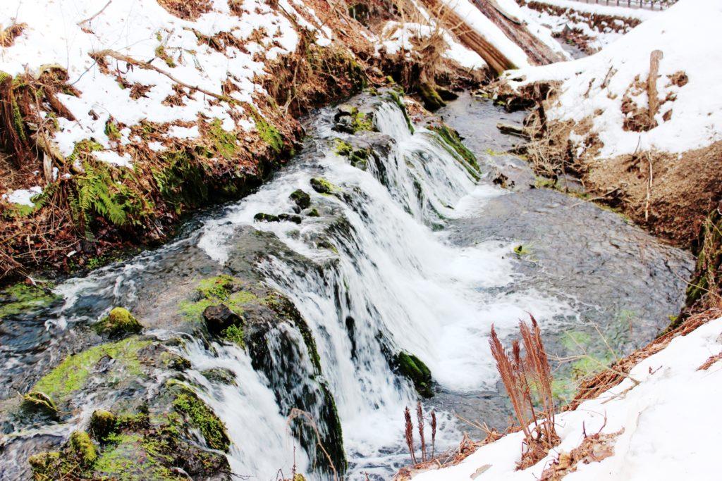 雪解け水による水温低下はダメ